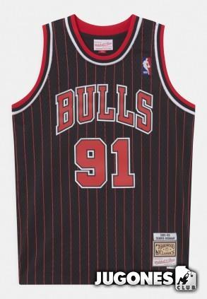 Chicago Bulls Dennis Rodman Jr 1995-1996