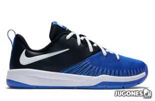 Nike Team Hustle D7 low (GS)