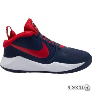Nike Team Hustle D9 (GS)