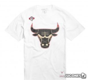 Gold Logo Tee White Jordan Bulls