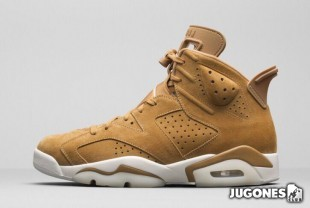 Nike Air Jordan 6 Retro `Golden Harvest`