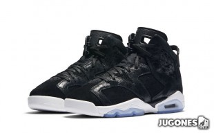 Jordan 6 Retro Premium Heiress Collection GG