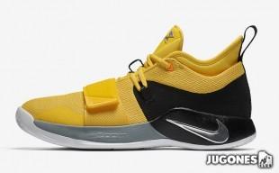 Pg 2.5 Basketball shoes