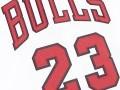 Authentic Jersey Chicago Bulls 1995-96 Michael Jordan