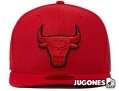 Gorra New Era Tonal Bulls Jr
